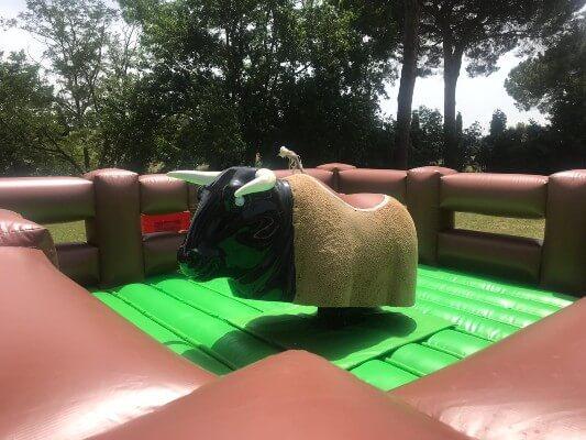 Toro meccanico in giardino: come trasportarlo e montarlo